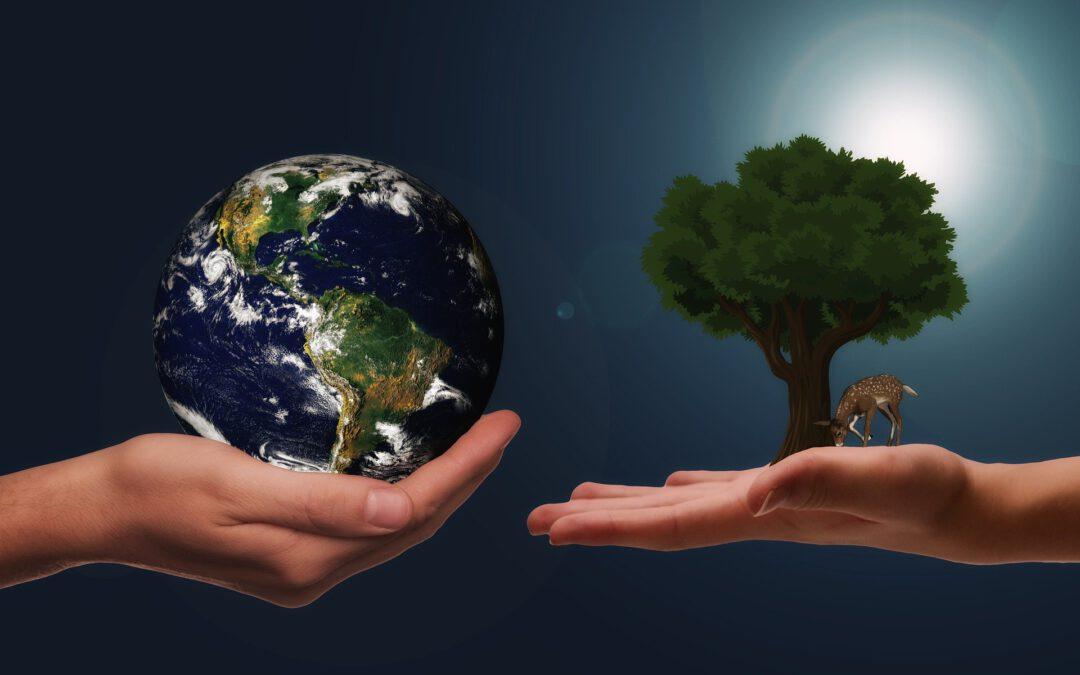 Wie verlässlich sind Nachhaltigkeits-Ratings?